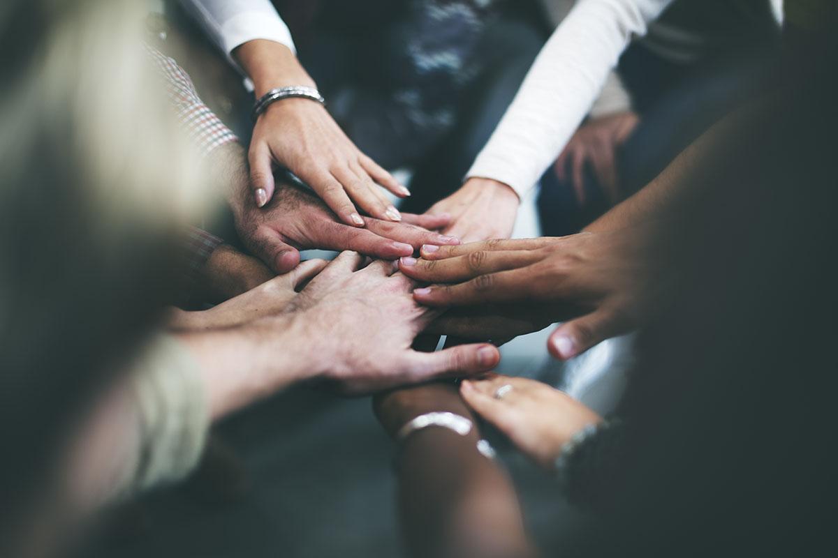 Organisation et Equipe
